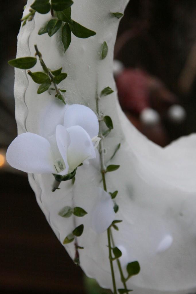 Eisblumen, Kusteis, Eisring