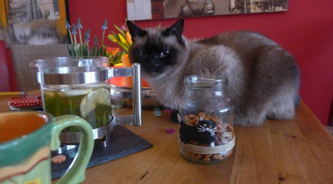Katze aus Fimo auf Glas