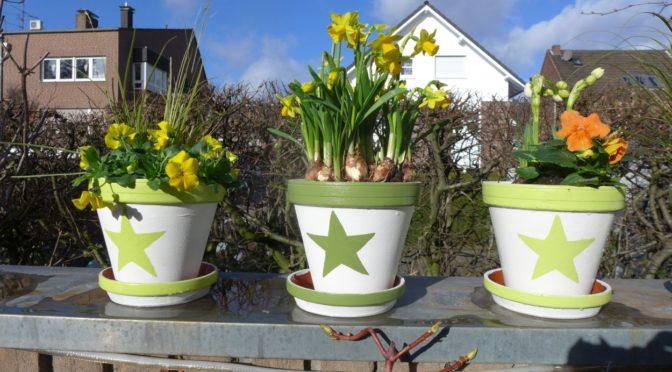 bemalte Blumentöpfe für Garten oder Balkon